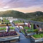 ramah-pavilion-Rooftop-Farming