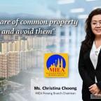 miea--property-pitfalls